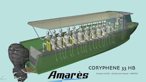 Amarès, Coryphène 33